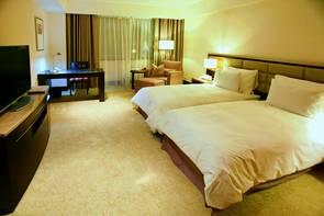 尊爵天際大飯店 Monarch Skyline Hotel